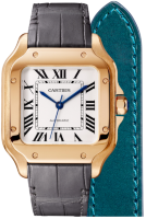 Santos De Cartier Watch WGSA0012