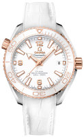 Omega Seamaster Planet Ocean 600m Co-Axial Master Chronometer 39,5 mm 215.23.40.20.04.001