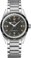 Omega Seamaster 300 Co-Axial Master Chronometer 234.10.39.20.01.001