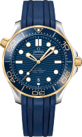 Omega Seamaster Diver 300 m Co-axial Chronometer 42 mm 210.22.42.20.03.001
