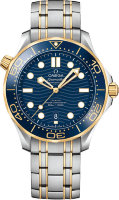 Omega Seamaster Diver 300m Co Axial Master Chronometer 42mm Mens Watch 210.20.42.20.03.001