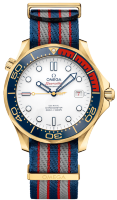 Omega SeaMaster Diver 300 Co-Axial Chronograph 41 mm 212.62.41.20.04.001