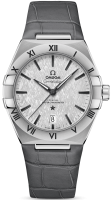 Constellation Omega Co-axial Master Chronometer 39 mm 131.13.39.20.06.001