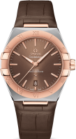 Constellation Omega Co-axial Master Chronometer 39 mm 131.23.39.20.13.001